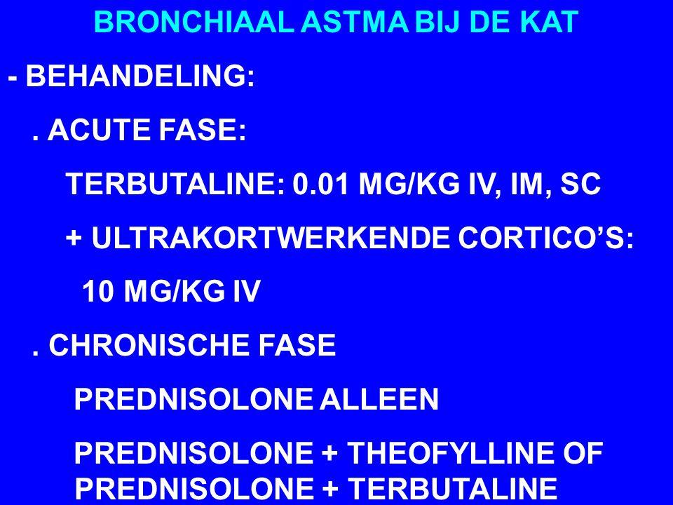 BRONCHIAAL ASTMA BIJ DE KAT