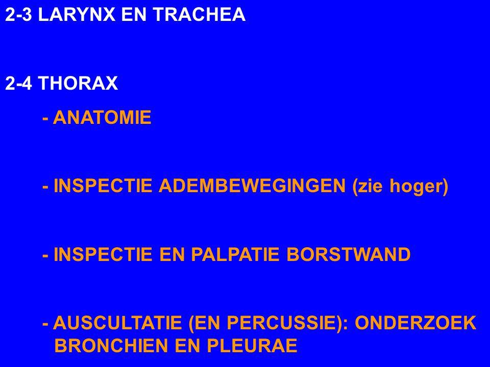 2-3 LARYNX EN TRACHEA 2-4 THORAX. - ANATOMIE. - INSPECTIE ADEMBEWEGINGEN (zie hoger) - INSPECTIE EN PALPATIE BORSTWAND.