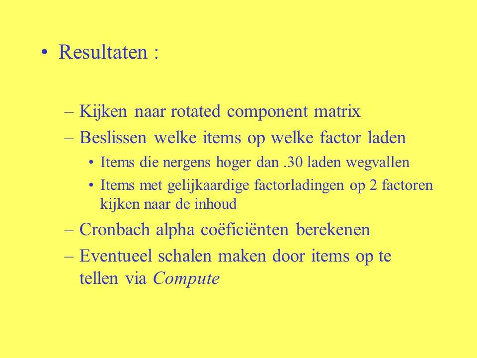 Resultaten : Kijken naar rotated component matrix