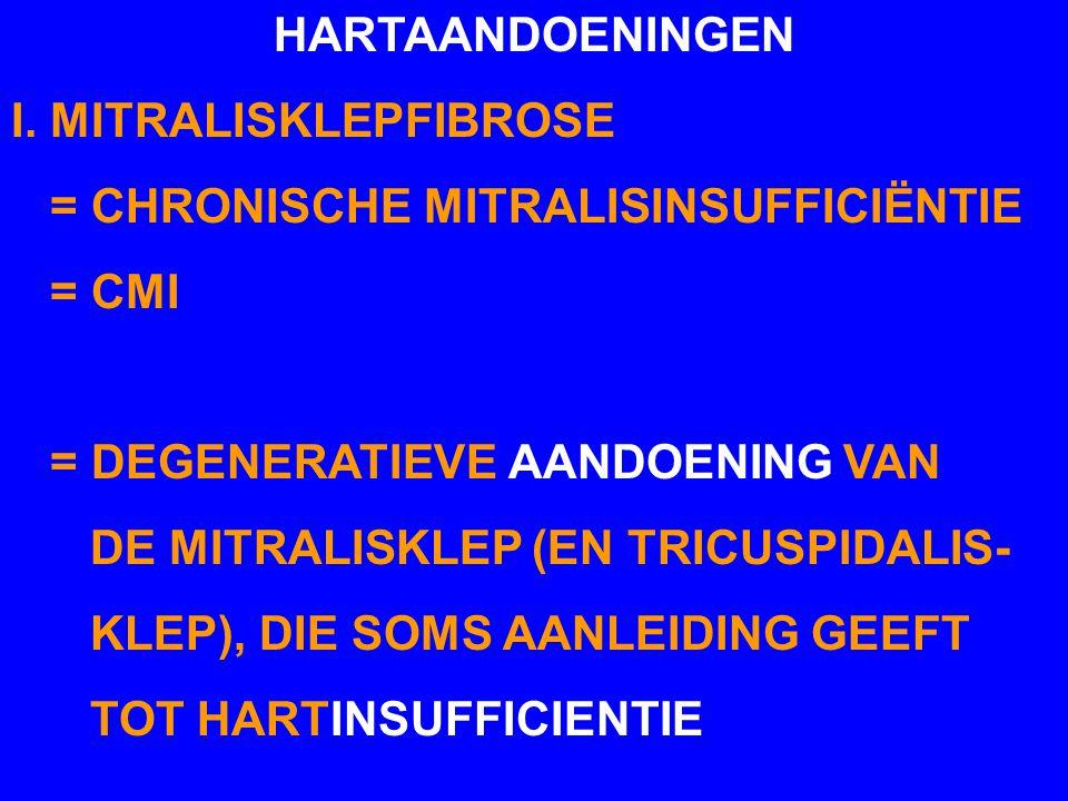 HARTAANDOENINGEN I. MITRALISKLEPFIBROSE. = CHRONISCHE MITRALISINSUFFICIËNTIE. = CMI. = DEGENERATIEVE AANDOENING VAN.