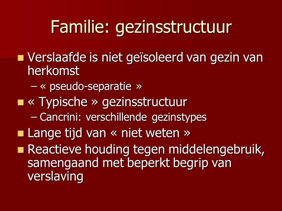 Familie: gezinsstructuur