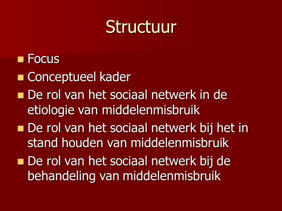 Structuur Focus Conceptueel kader