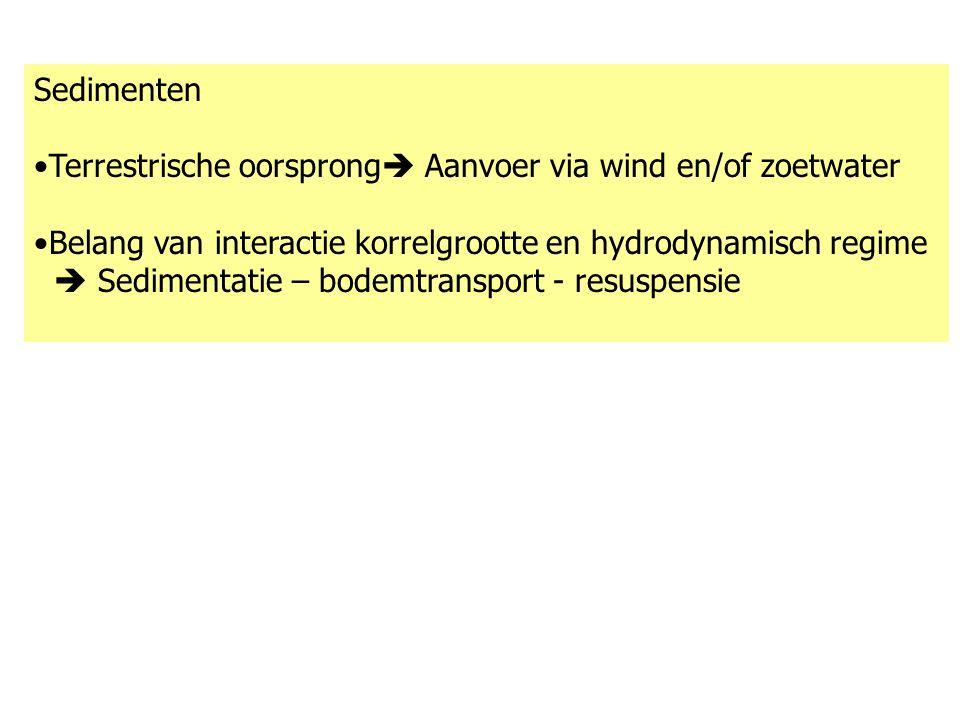 Sedimenten Terrestrische oorsprong Aanvoer via wind en/of zoetwater. Belang van interactie korrelgrootte en hydrodynamisch regime.