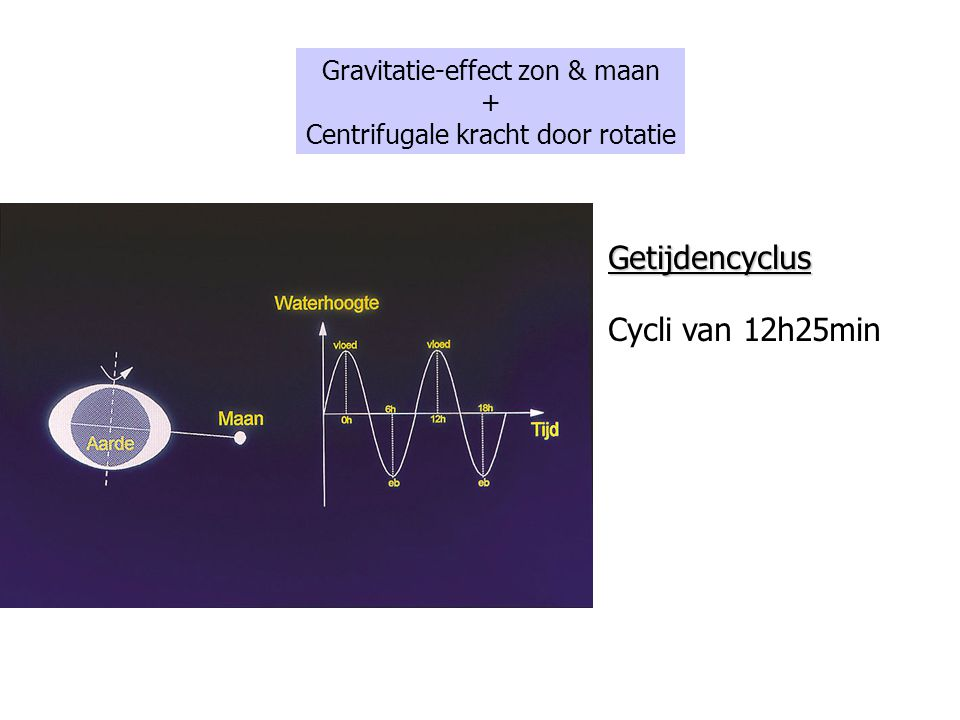 Getijdencyclus Cycli van 12h25min Gravitatie-effect zon & maan +