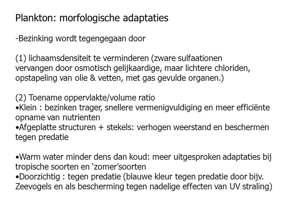 Plankton: morfologische adaptaties