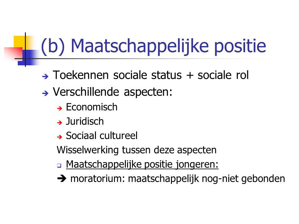 (b) Maatschappelijke positie