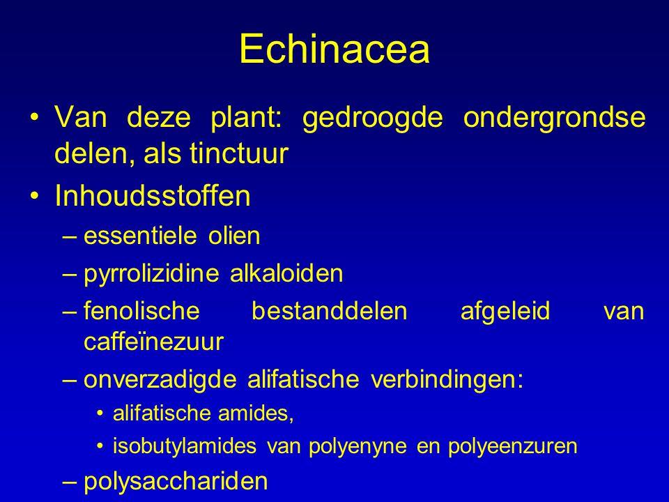 Echinacea Van deze plant: gedroogde ondergrondse delen, als tinctuur