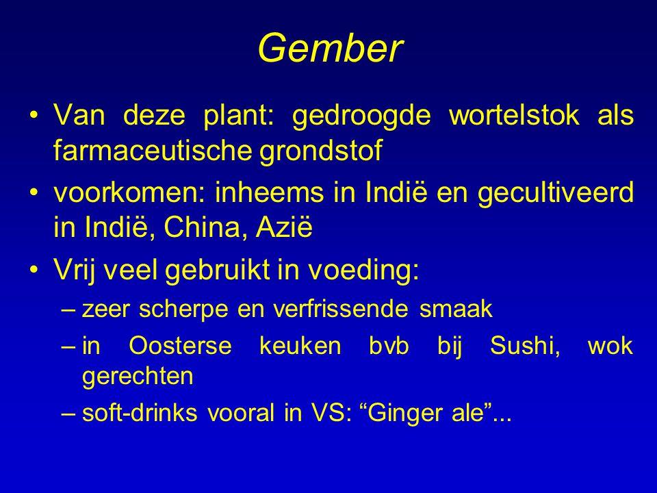 Gember Van deze plant: gedroogde wortelstok als farmaceutische grondstof. voorkomen: inheems in Indië en gecultiveerd in Indië, China, Azië.