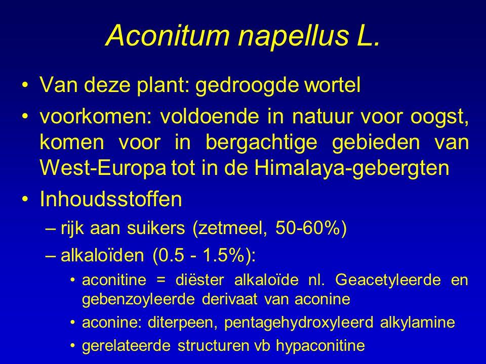 Aconitum napellus L. Van deze plant: gedroogde wortel