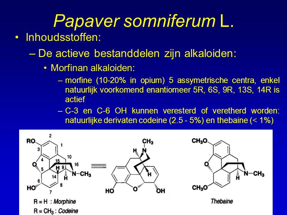 Papaver somniferum L. Inhoudsstoffen: