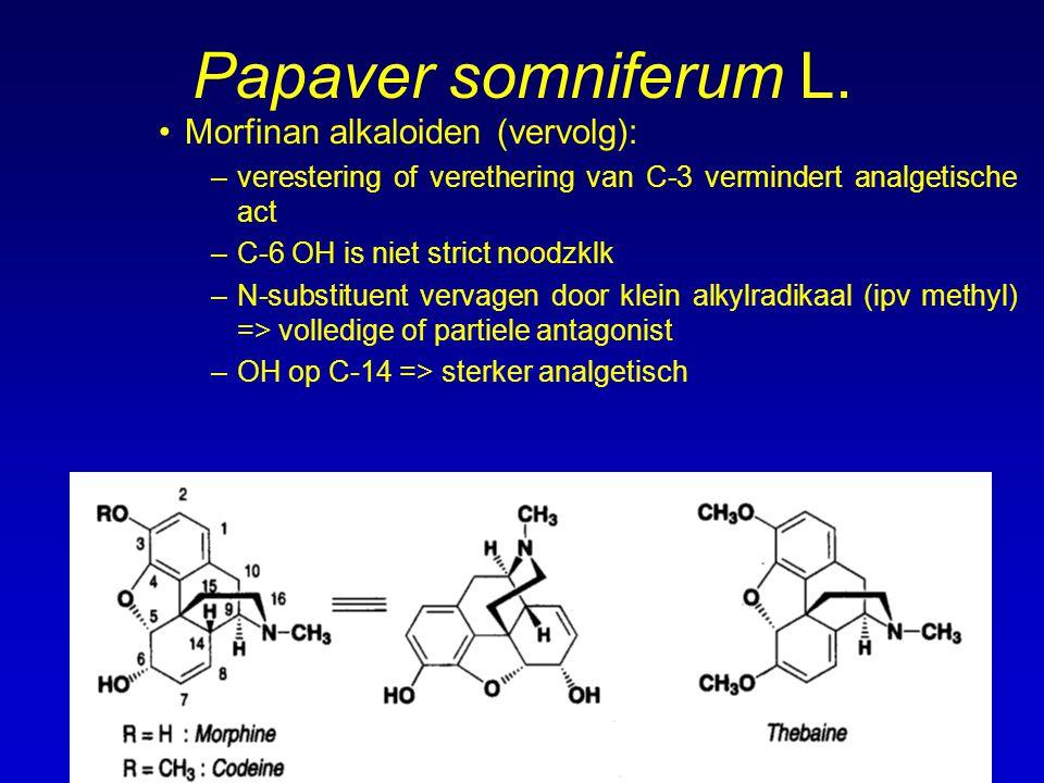 Papaver somniferum L. Morfinan alkaloiden (vervolg):