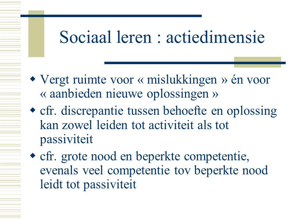 Sociaal leren : actiedimensie