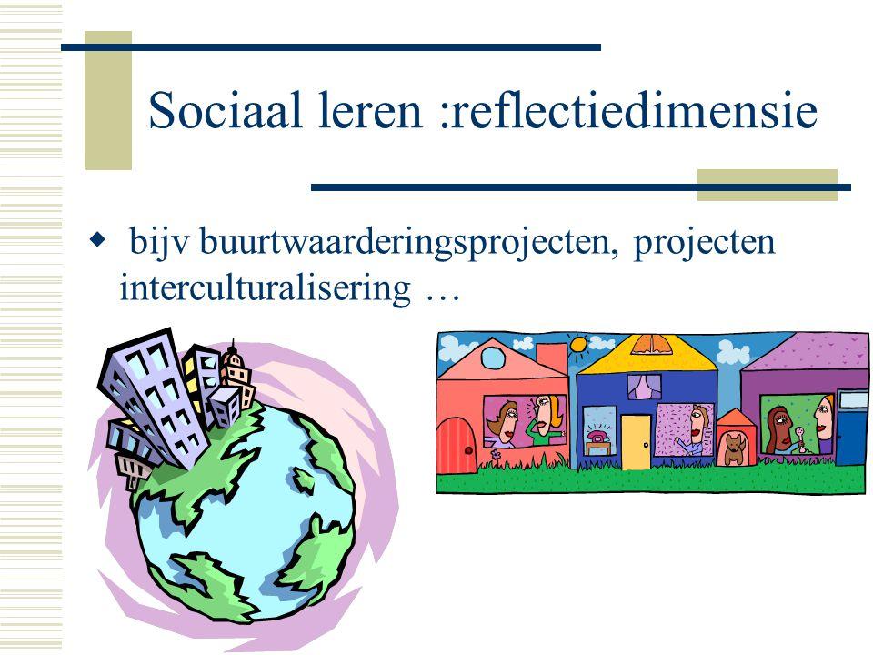 Sociaal leren :reflectiedimensie