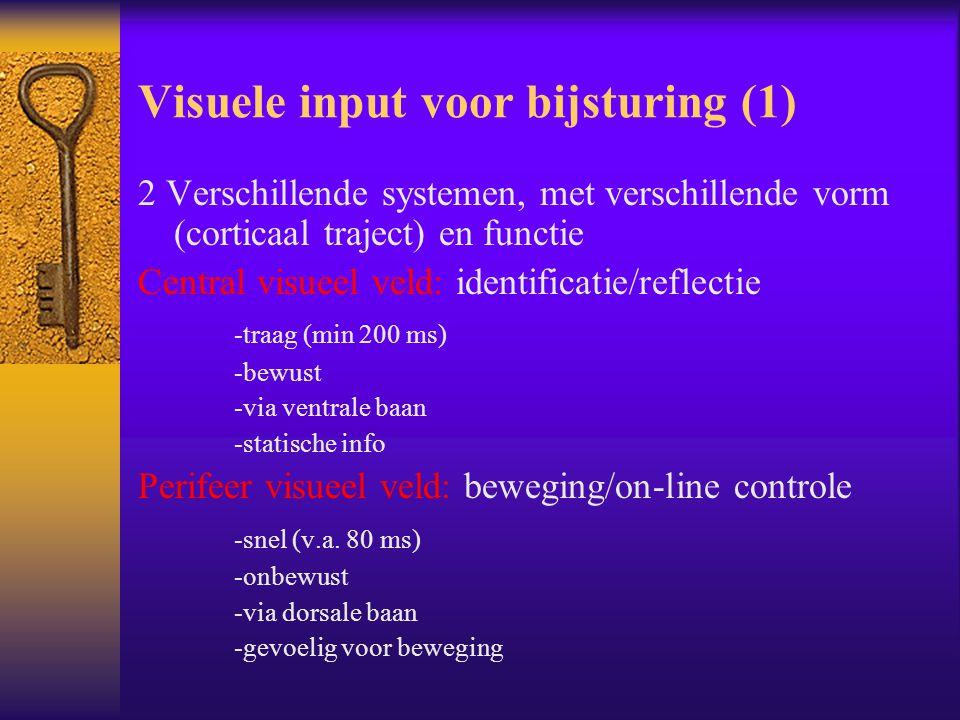 Visuele input voor bijsturing (1)