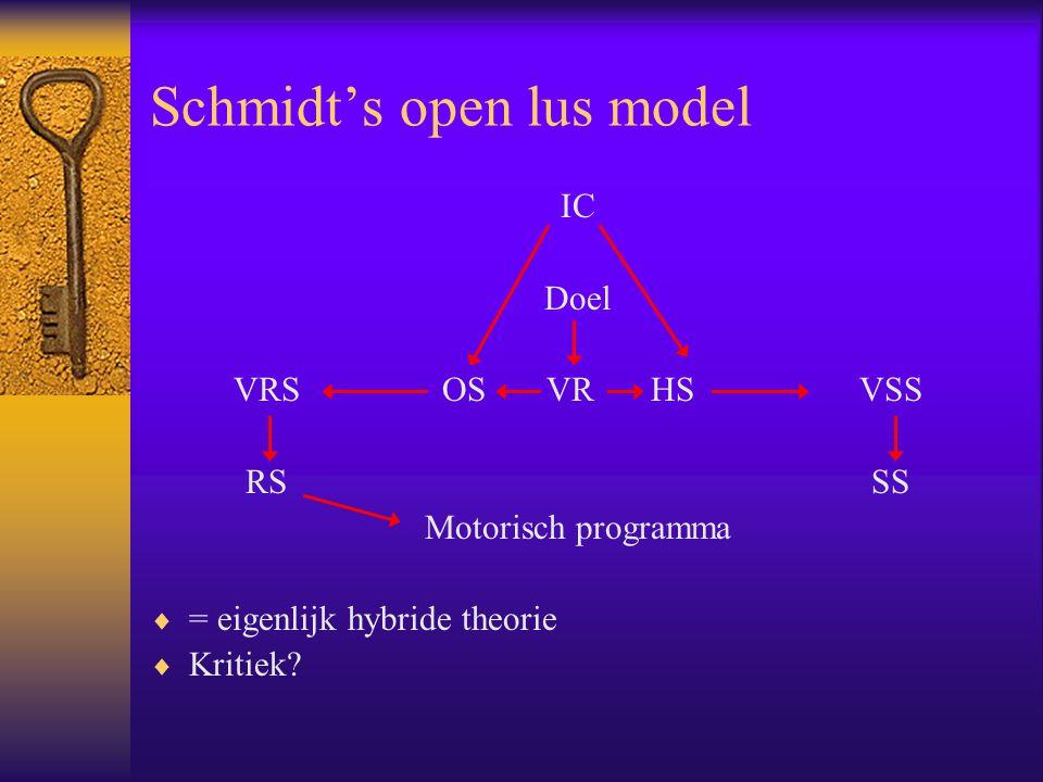 Schmidt's open lus model