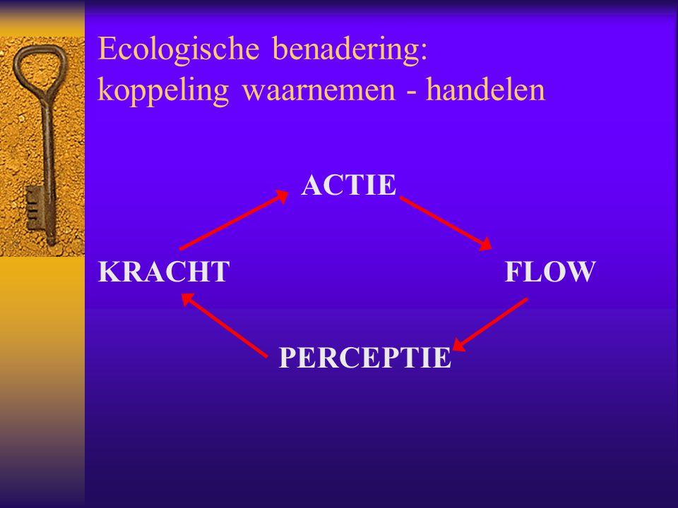 Ecologische benadering: koppeling waarnemen - handelen