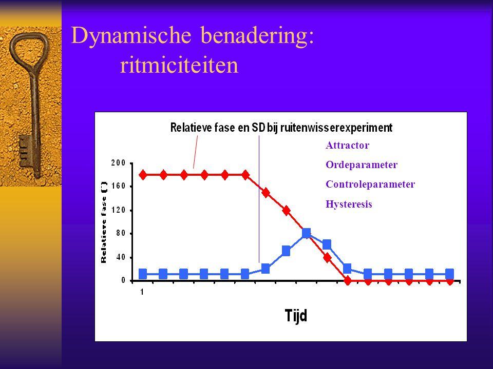 Dynamische benadering: ritmiciteiten