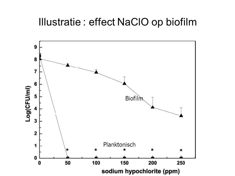 Illustratie : effect NaClO op biofilm
