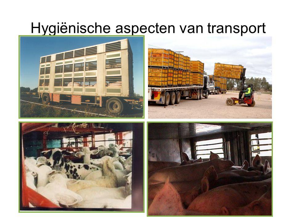 Hygiënische aspecten van transport