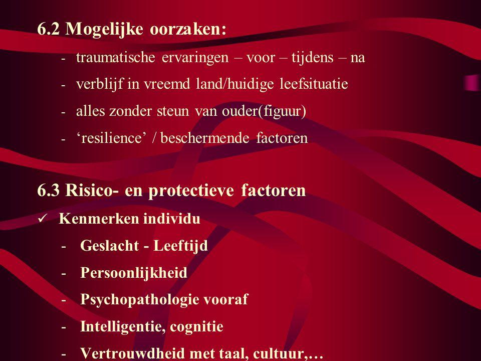 6.3 Risico- en protectieve factoren