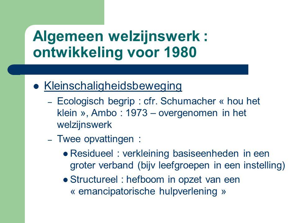 Algemeen welzijnswerk : ontwikkeling voor 1980