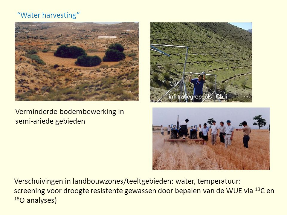 Verminderde bodembewerking in semi-ariede gebieden