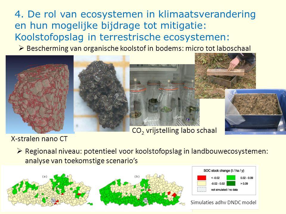 4. De rol van ecosystemen in klimaatsverandering en hun mogelijke bijdrage tot mitigatie: Koolstofopslag in terrestrische ecosystemen: