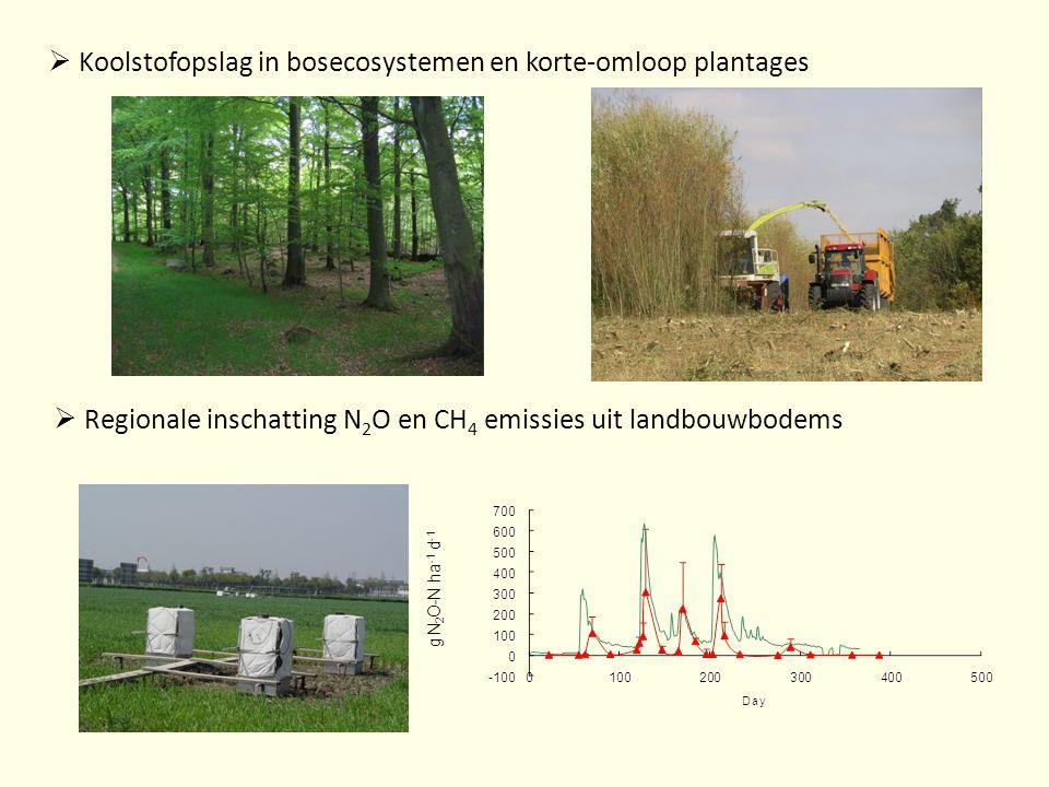 Koolstofopslag in bosecosystemen en korte-omloop plantages