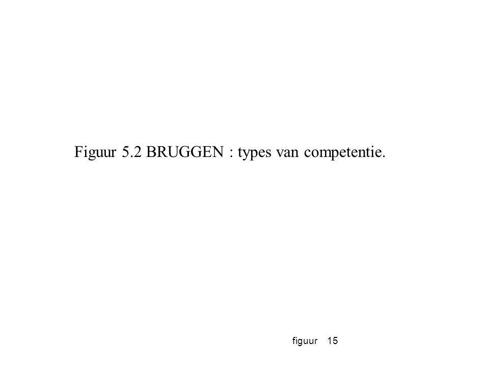 Figuur 5.2 BRUGGEN : types van competentie.