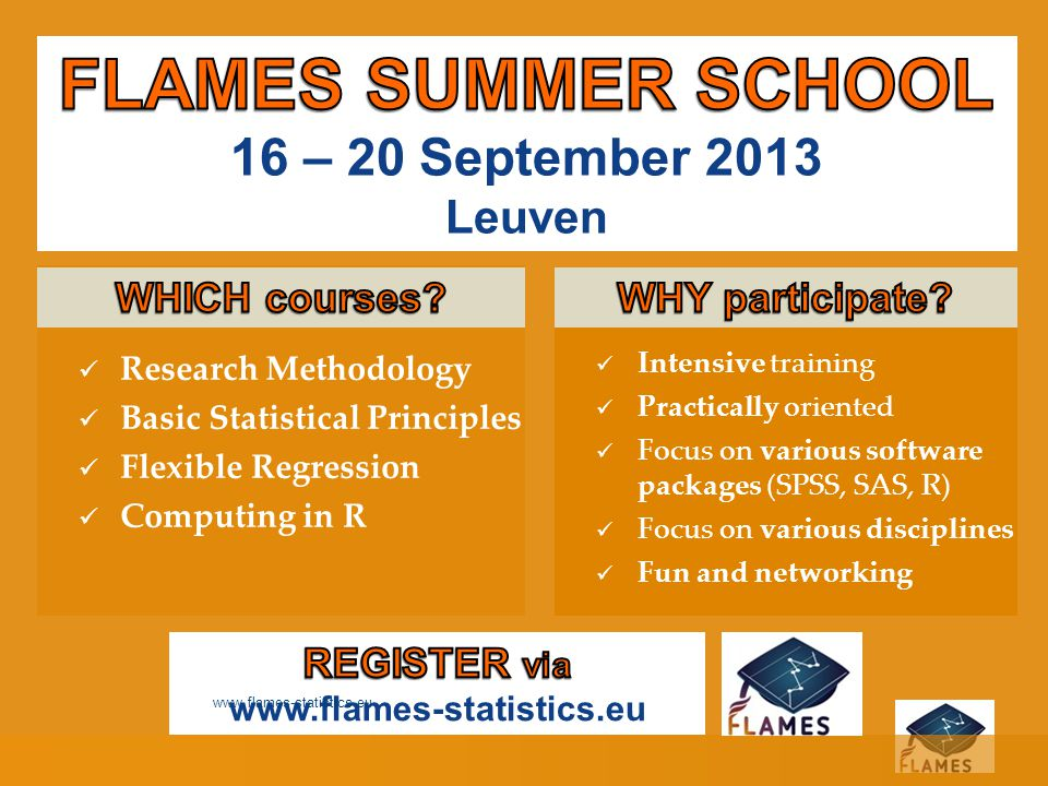 FLAMES SUMMER SCHOOL 16 – 20 September 2013 Leuven WHICH courses