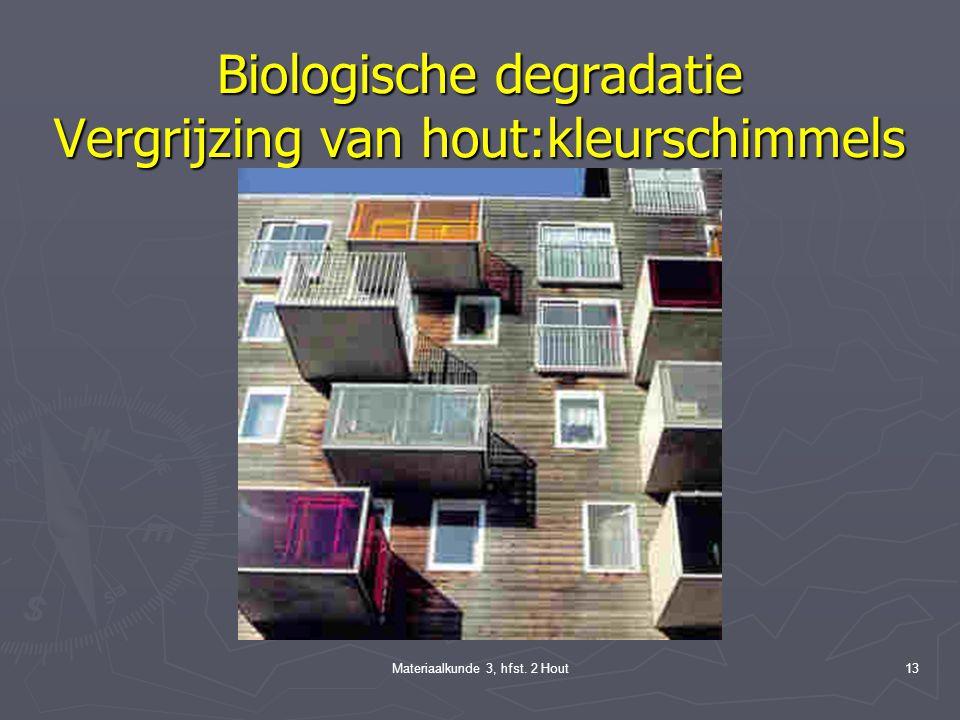 Biologische degradatie Vergrijzing van hout:kleurschimmels