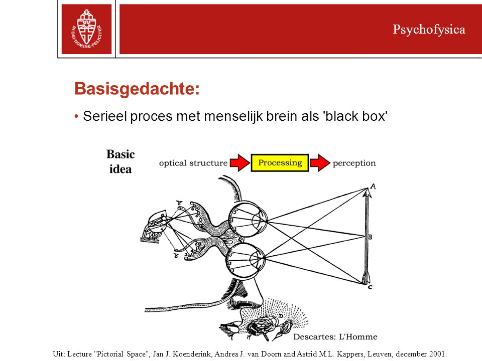Basisgedachte: Serieel proces met menselijk brein als black box