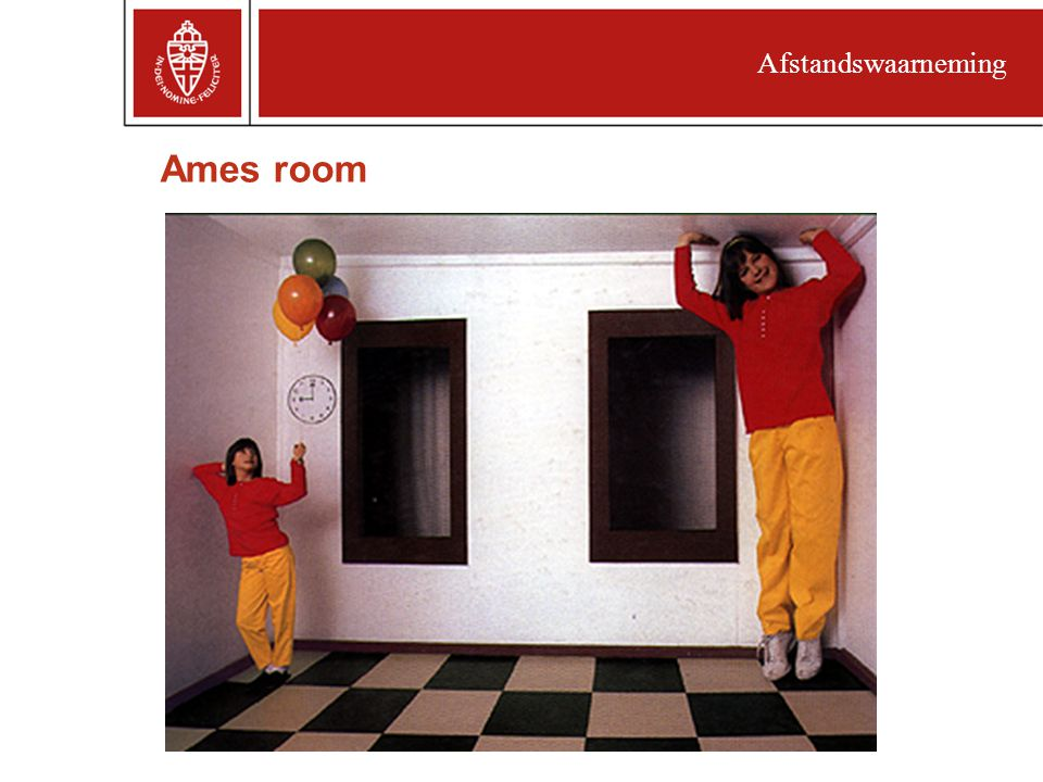 Afstandswaarneming Ames room