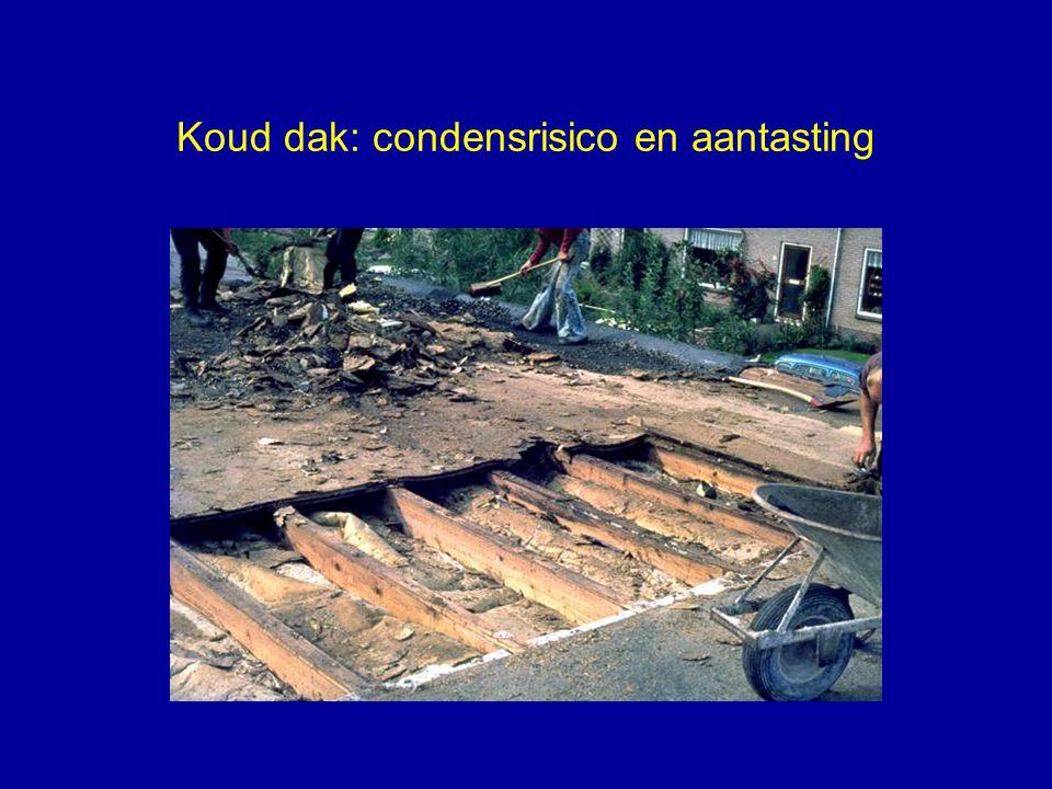 Koud dak: condensrisico en aantasting