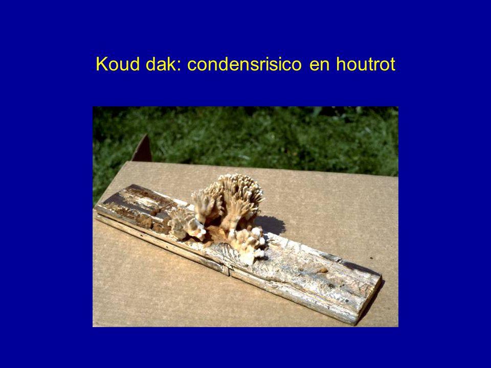 Koud dak: condensrisico en houtrot