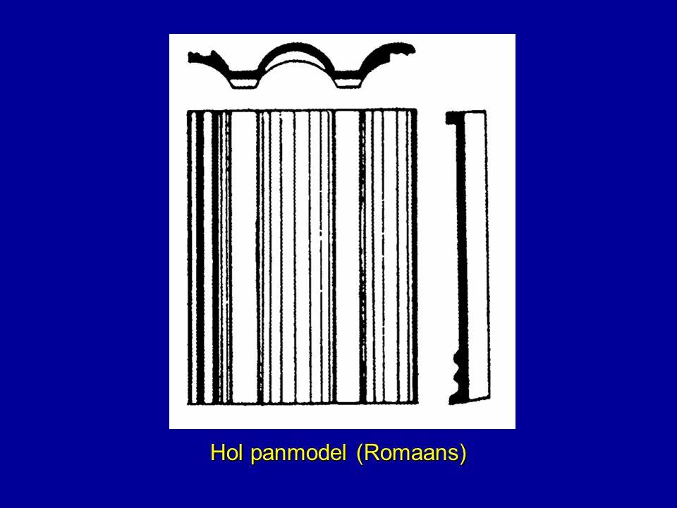 Hol panmodel (Romaans)