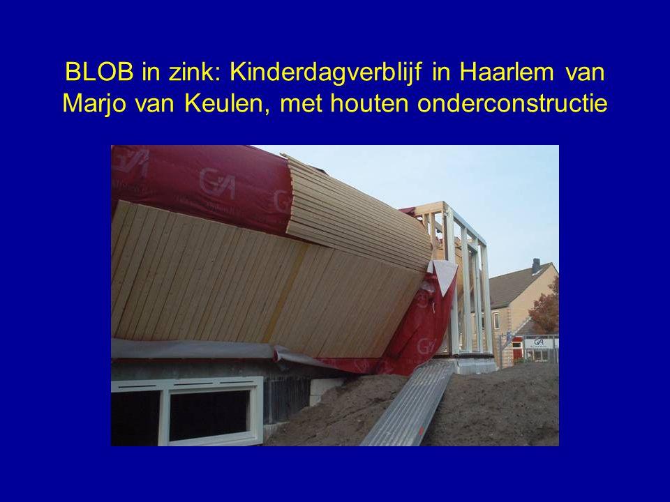 BLOB in zink: Kinderdagverblijf in Haarlem van Marjo van Keulen, met houten onderconstructie