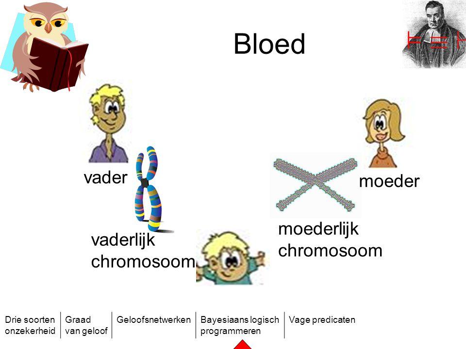 ² ´ ` Bloed vader moeder moederlijk chromosoom vaderlijk chromosoom