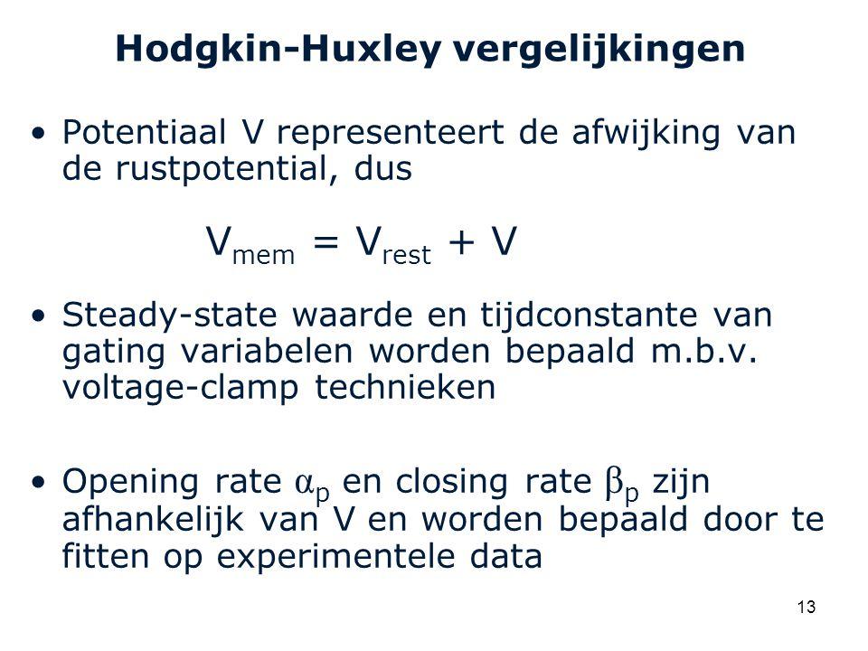 Hodgkin-Huxley vergelijkingen