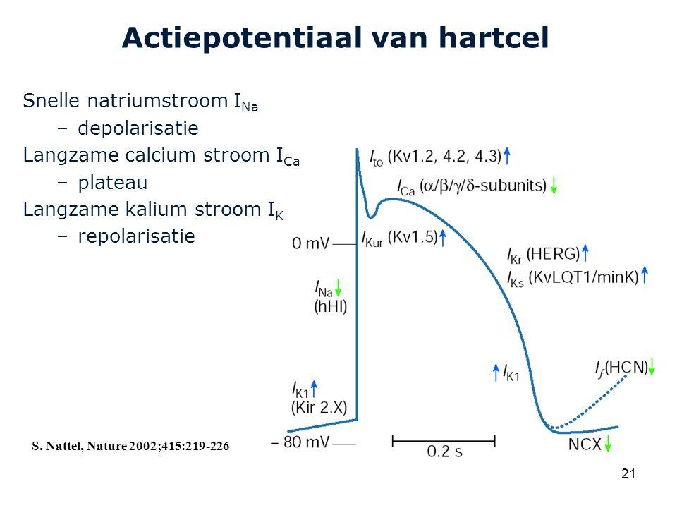 Actiepotentiaal van hartcel