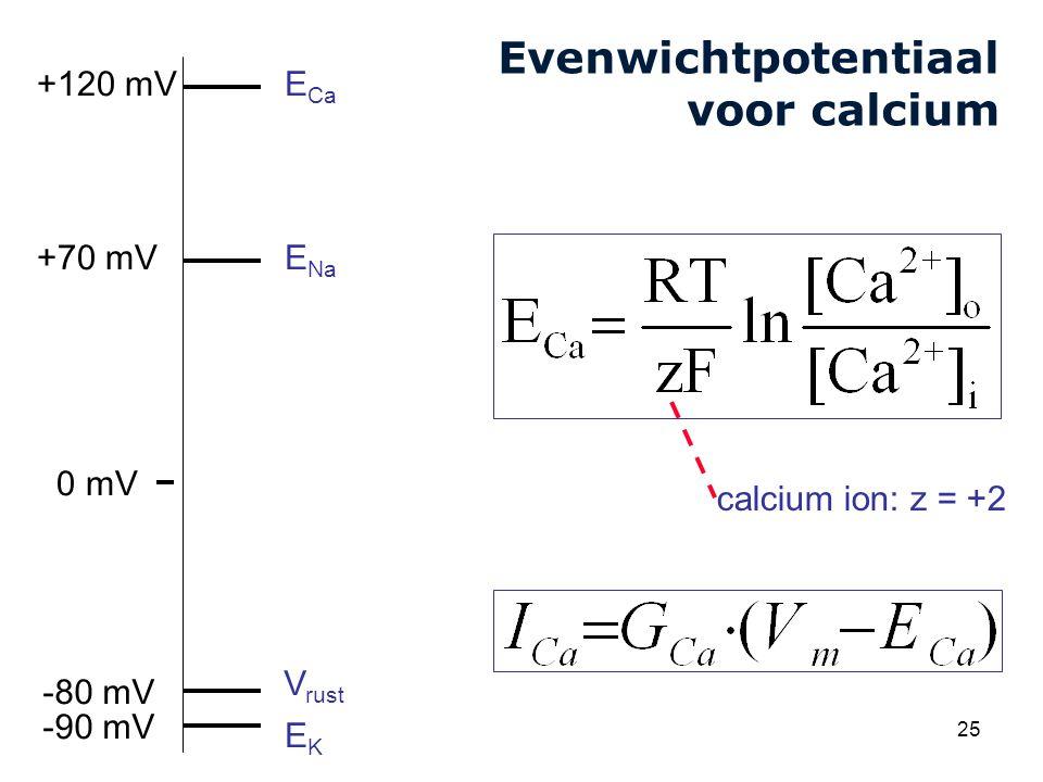 Evenwichtpotentiaal voor calcium