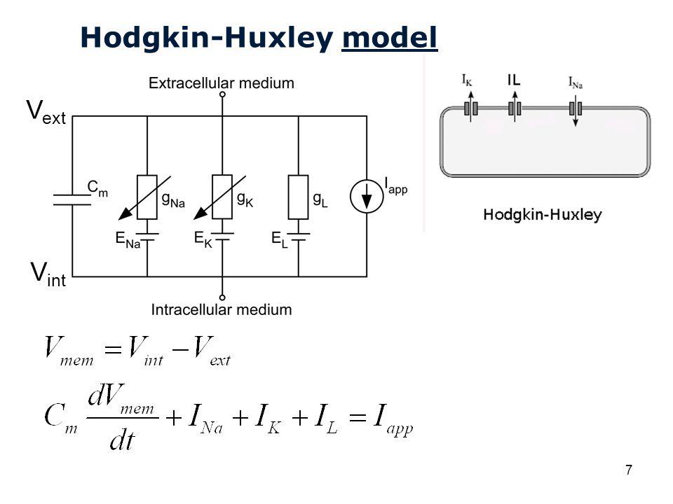 Hodgkin-Huxley model Vext Vint
