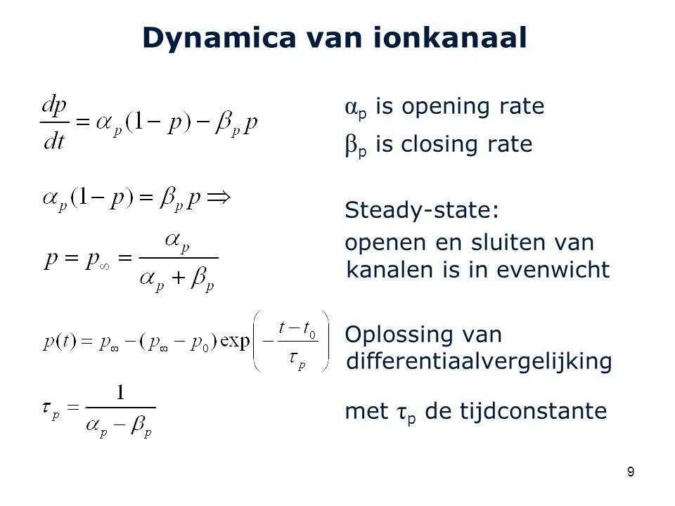 Dynamica van ionkanaal