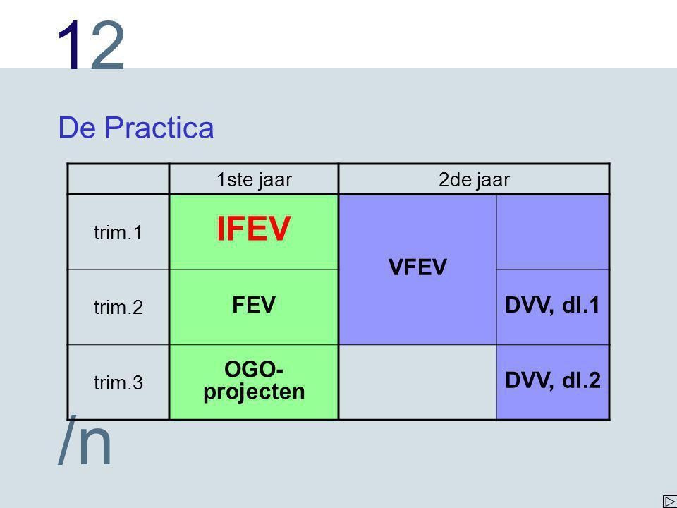 IFEV De Practica VFEV FEV DVV, dl.1 OGO-projecten DVV, dl.2 1ste jaar