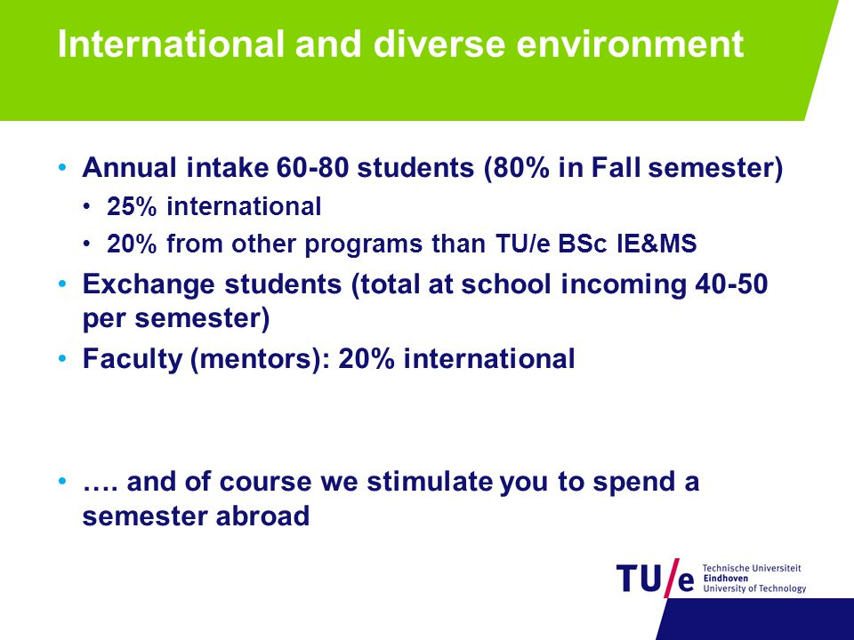 International and diverse environment