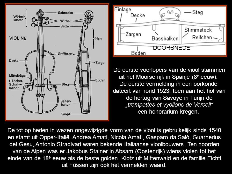 De eerste voorlopers van de viool stammen
