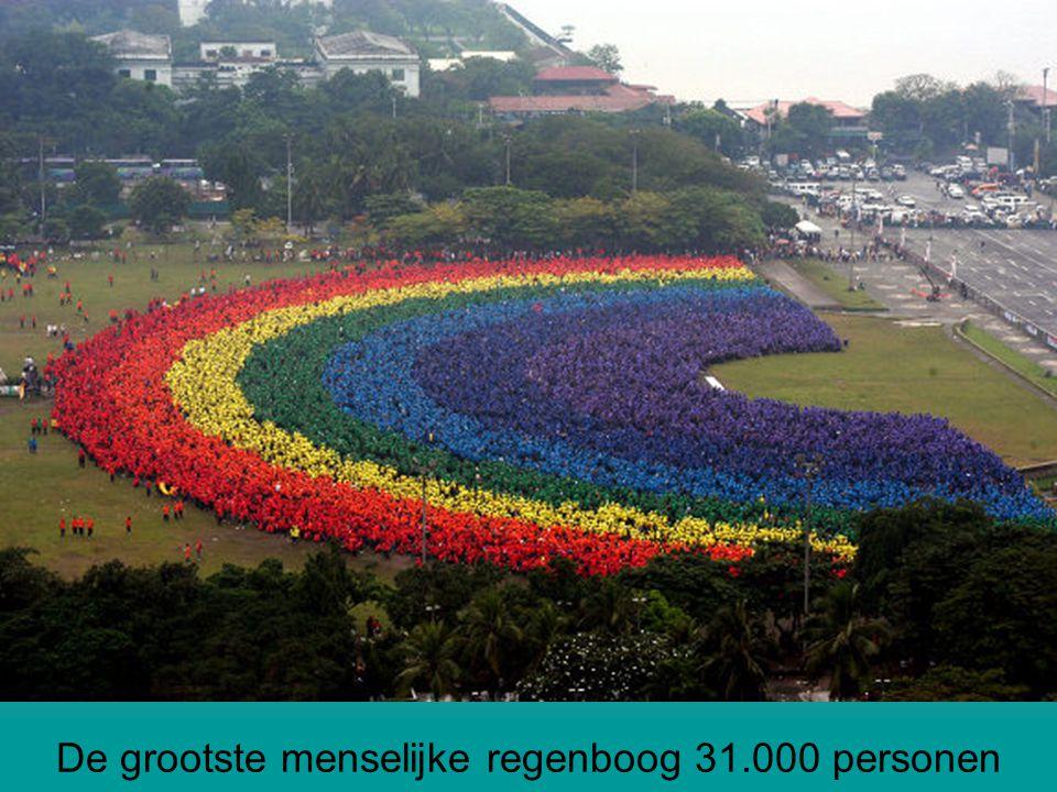 De grootste menselijke regenboog 31.000 personen