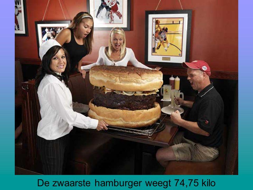 De zwaarste hamburger weegt 74,75 kilo