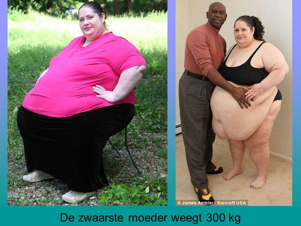 De zwaarste moeder weegt 300 kg
