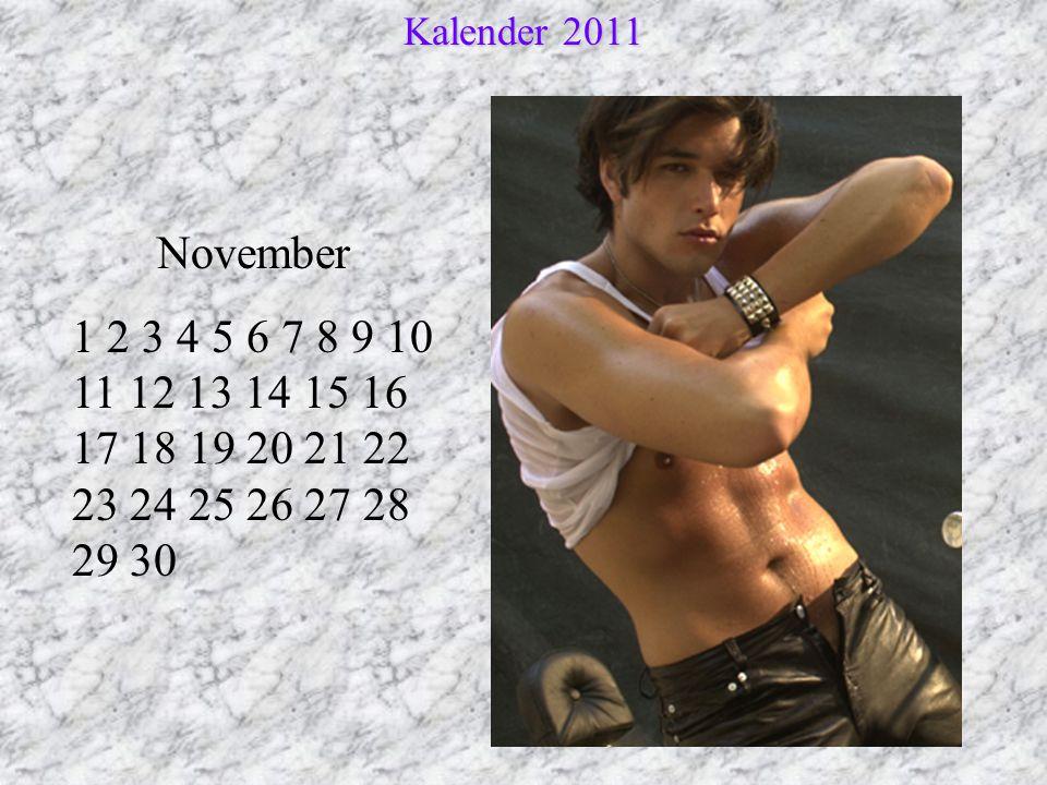 Kalender 2011 November.